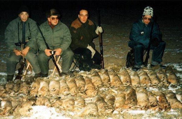 Охота на зайца русака