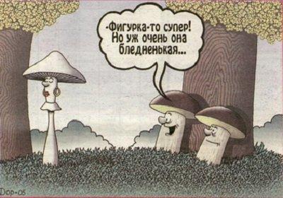 Токсины грибов и их воздействие на человека