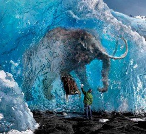 Нашли живого мамонта в Сибири.