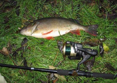 Рыбалка на спиннинг советы