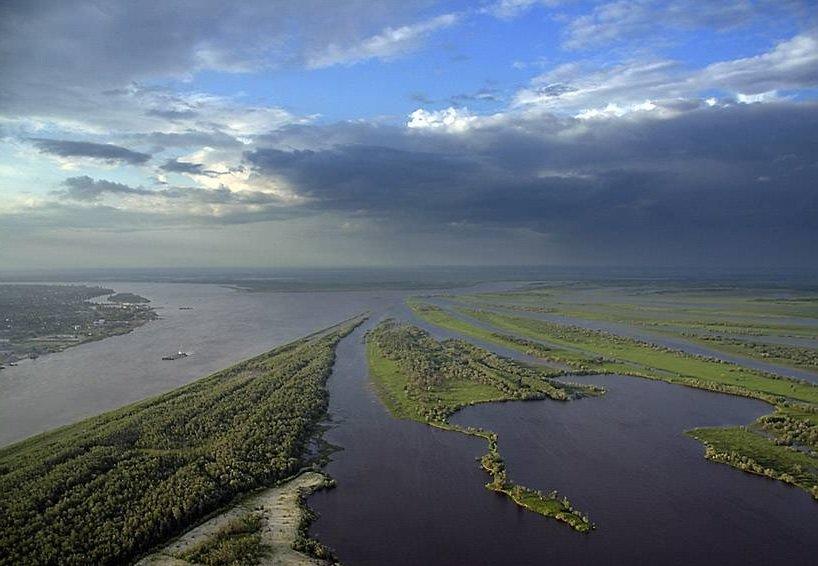 Рыбы рек и озер подробная информация