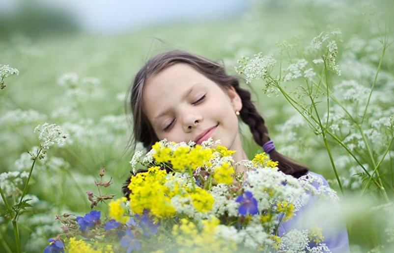 Есть ли у растений разум и чувства