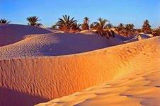 Пустыни планеты