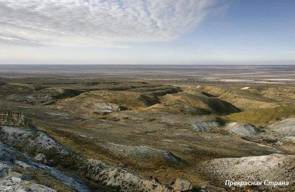 Эта почва - дно Аральского моря - пол-века назад здесь была вода...