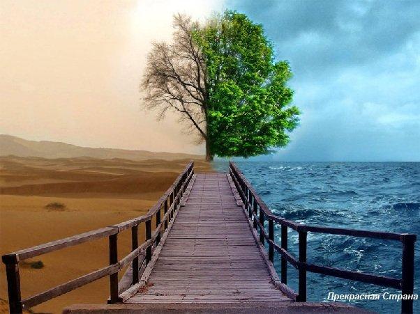 Доказательства изменения климата на Земле