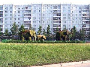 Когда слоны жили в Сибири