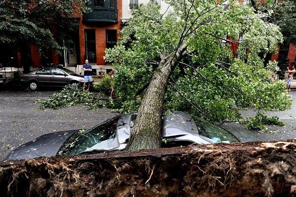 Ураганы и шквальные ветры