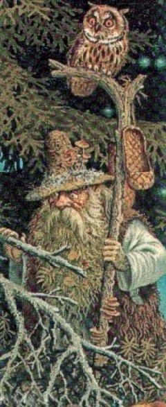 Деревья обереги Волшебная сила дерева