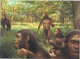 Ископаемая обезьяна Саадан гиязенский