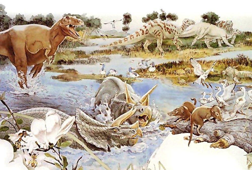 Какая была жизнь миллионы лет назад на земле