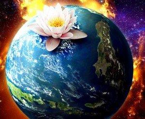 Когда появились цветы на планете