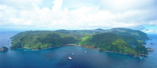 Остров Кокос — природа, растения, животные