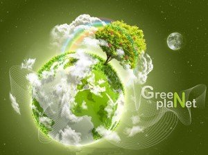 Биоразнообразие и экосистемы планеты Земля