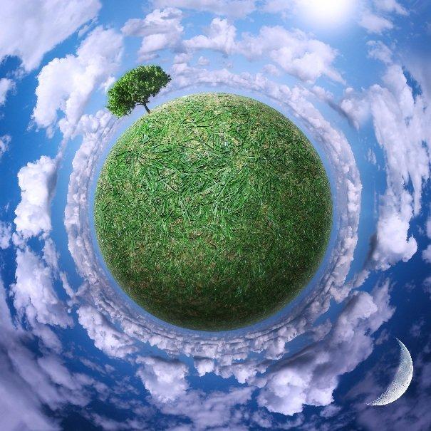 Биоразнообразие планеты Земля зависит от человека