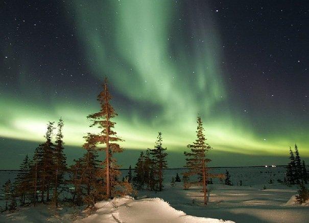 Природа Северной половины Европейской части России