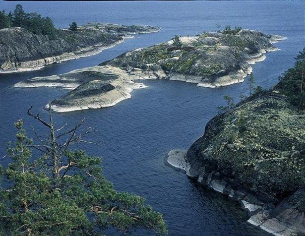 Природа северной европейской части России