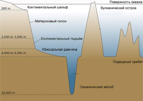 Строение структуры океанического ложа Земли