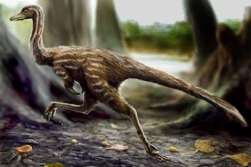 Оперенные динозавры - описание нового вида