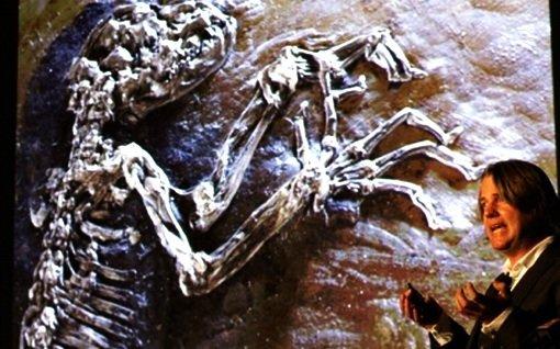 Обезьяна или лемур — удивительная находка
