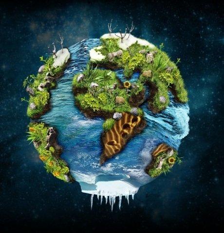 Откуда на земле появились растения