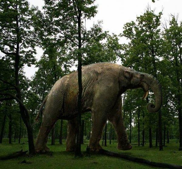 Доисторические животные фото самых странных - Дейнотерий