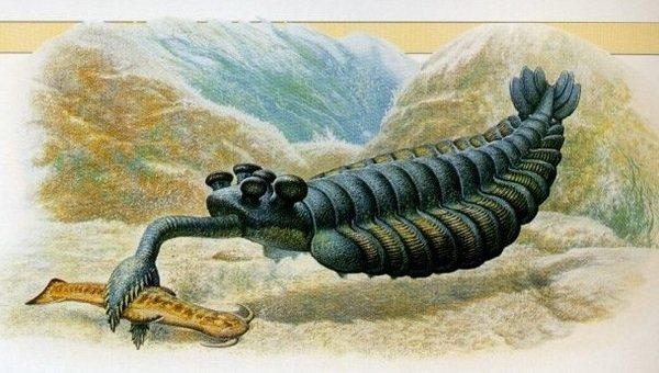 Доисторические животные фото самых странных - Опабиния