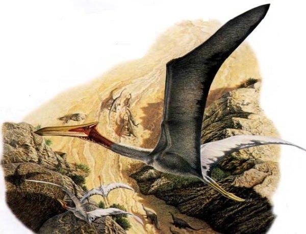 Доисторические животные фото самых странных - Кецалькоатль