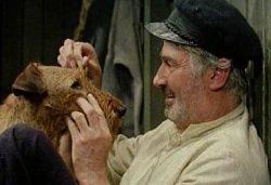 Лучшие фильмы про животных - Приключения рыжего Майкла