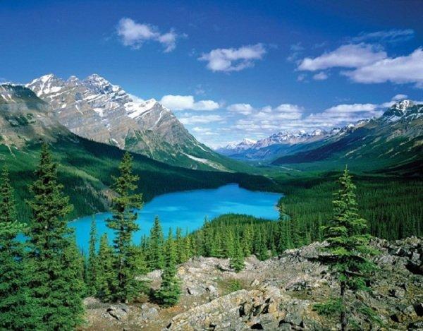 Самые красивые озера мира фото Озеро Пейто, Альберта, Канада