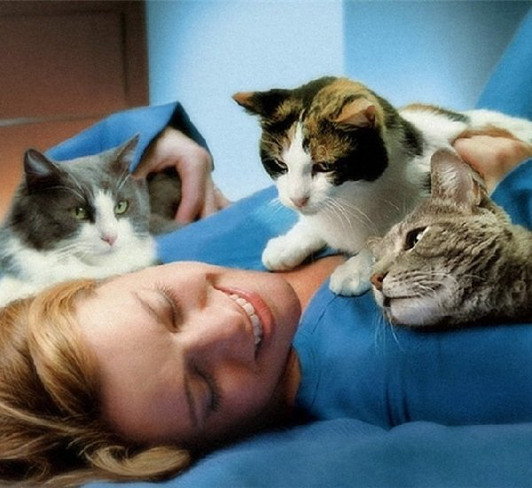 Почему кошки любят спать на человеке?