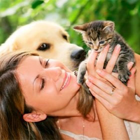 Терапия животными — лечитесь с удовольствием!
