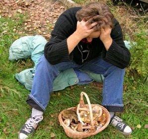 Заблудился в лесу — что делать?