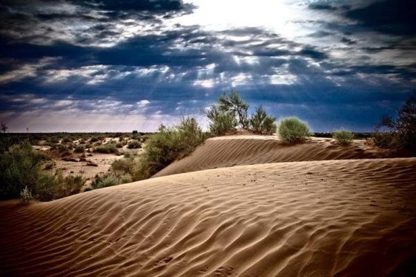 Пустыни Каракум и Кызылкум