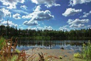 Озеро Смердячье в Шатурском районе