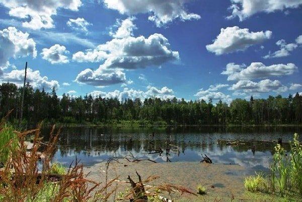 Озеро Смердячье в Московской области