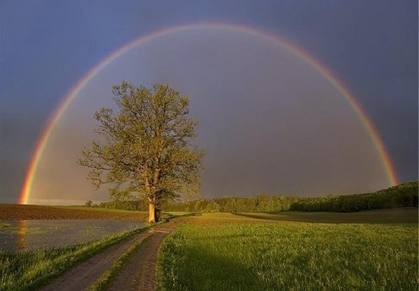 Культ природы у древних славян