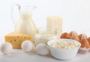 Яйца и молочные продукты в питании животного