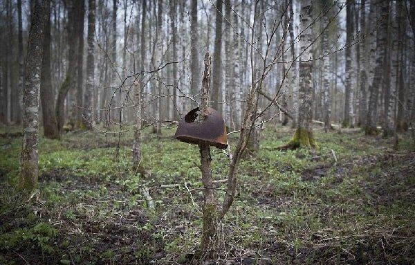 Загадочные места России - Мясной бор