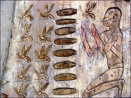 Насекомые и их боги древности