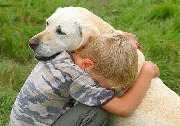 Собака в жизни оебенка – это не только друг!