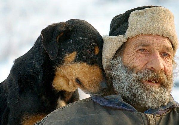 Собака в жизни пожилого человека – это не только друг!