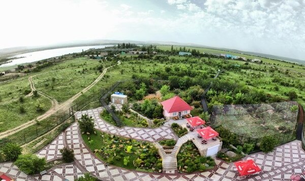 "Сафари парк львов ""Тайган"" в Крыму"