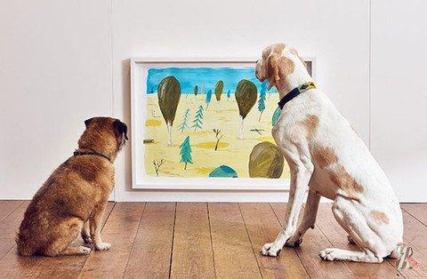 В Британии прошла первая в мире выставка современного искусства для… собак