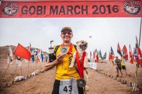 Марафонец забрал бездомную собаку, бежавшую с ним по пустыне Гоби