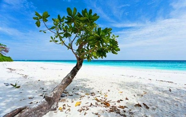 Власти Таиланда решили закрыть остров Тачай для туристов