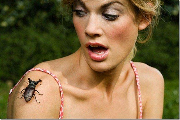 Самые странные, уродливые и ужасные насекомые (пауки) мира