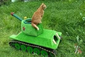 В России смастерили танк для кота