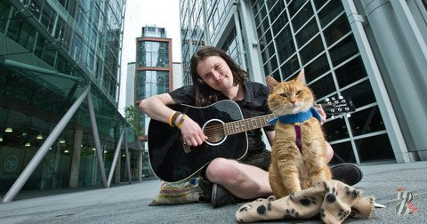 В Лондоне прошла премьера фильма про уличного кота Боба