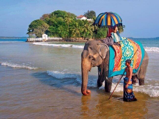 Отдых на Гоа: мечта любого путешественника.