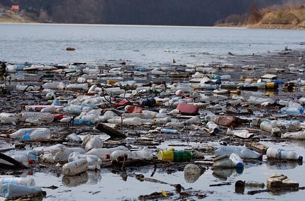 Пластиковые привычки и экологические альтернативы.